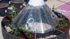 جهاز للزراعة فوق المياه المالحة ببخارها ومطرها