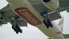 وقود حيوي للطائرات من نباتات صحراوية