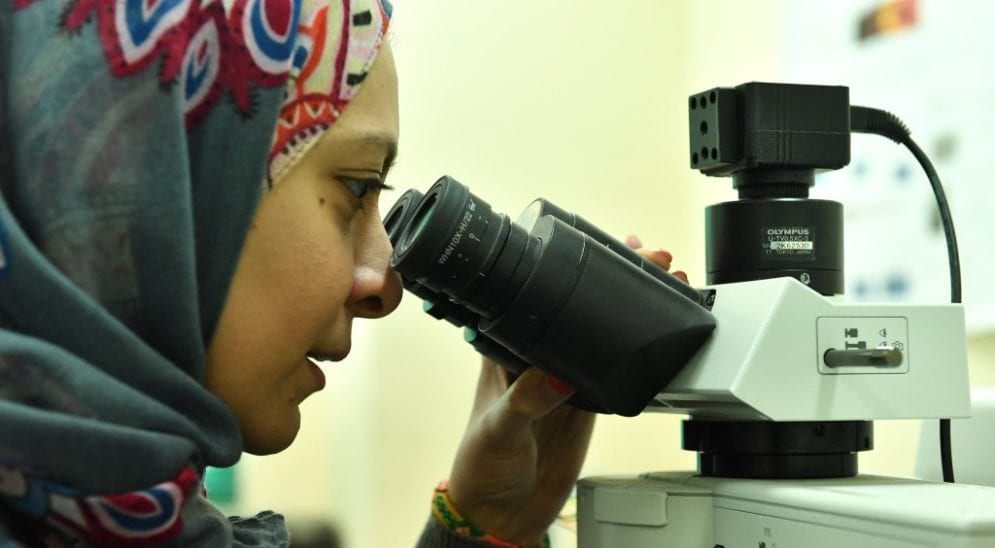 Egypt joint research centres