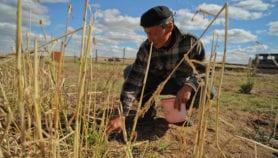 الجوع قد يكون على جناح خطط تخفيف آثار تغير المناخ