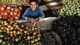 الأزمات والنزاعات تعدم المنطقة الأمن الغذائي
