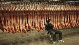 سرف أغنياء العالم في اللحم سبب مقاومة المضادات الحيوية