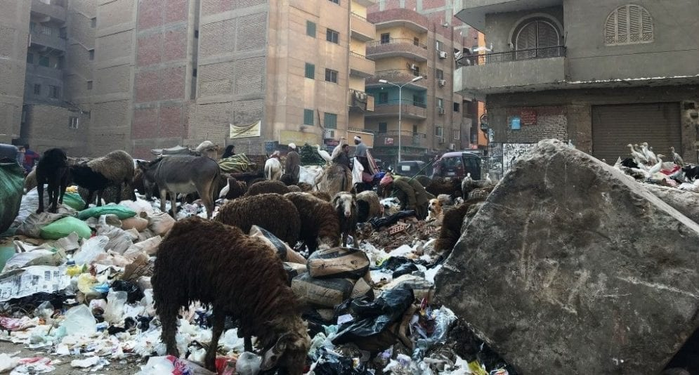 Egypt Garbage