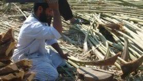 تدشين أول مركز عربي لبحوث المواد المتجددة
