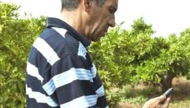 'أكسات'.. تطبيق لإعانة المزارع العربي في ري أرضه