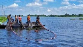 البلدان الساحلية الفقيرة محرومة من الانتفاع بأسماكها