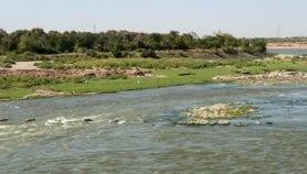 منبع سوء الفهم في توصيل قضايا النيل