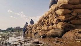 أمام فيضان السودان.. لم ينجح أحد
