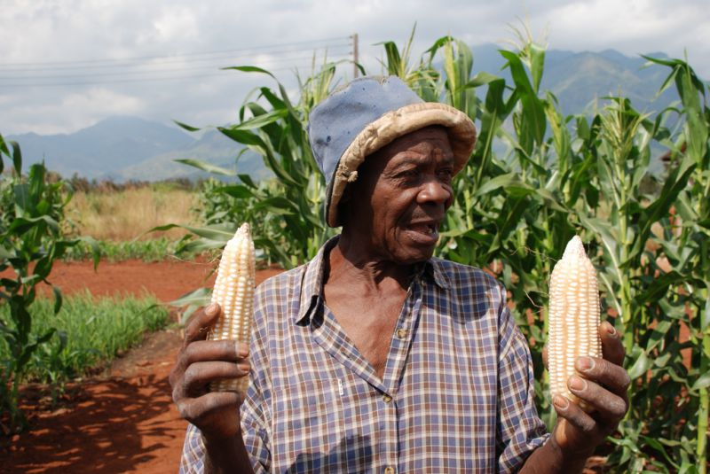 A farmer in Morogoro, Tanzania