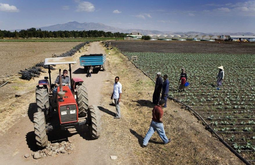 A tractor among fields where labourers