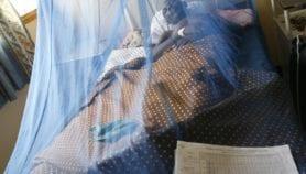 New gene of malaria parasite 'could make control hard'