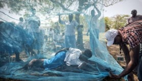 Community projects cut new malaria cases by 94 per cent