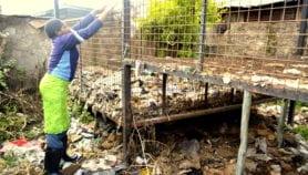 Kenyan slum dwellers using garbage as cooking fuel