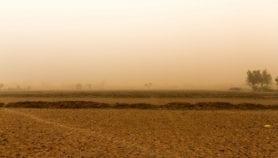 Dust and wind linked to 'meningitis belt' outbreaks
