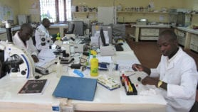 Brain drain could be holding opportunities for Africa