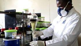 Kenyan uncovers antituberculosis plants