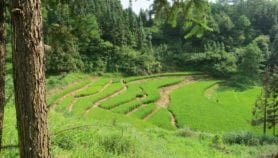 Data and local know-how for sustainable land use
