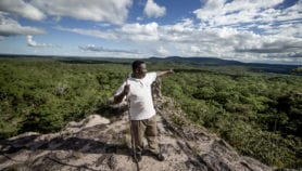 Protected areas in East Africa flourishing