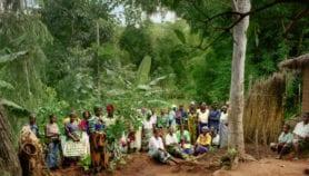 Africa should spur herbal medicine safety, value women