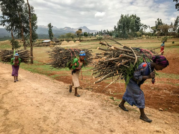 Women carrying firewood to sell