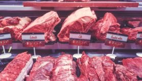 Innovative policies needed for increasing meat demand