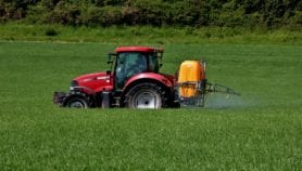 Europe-banned insecticide 'threatens Africa's food security'