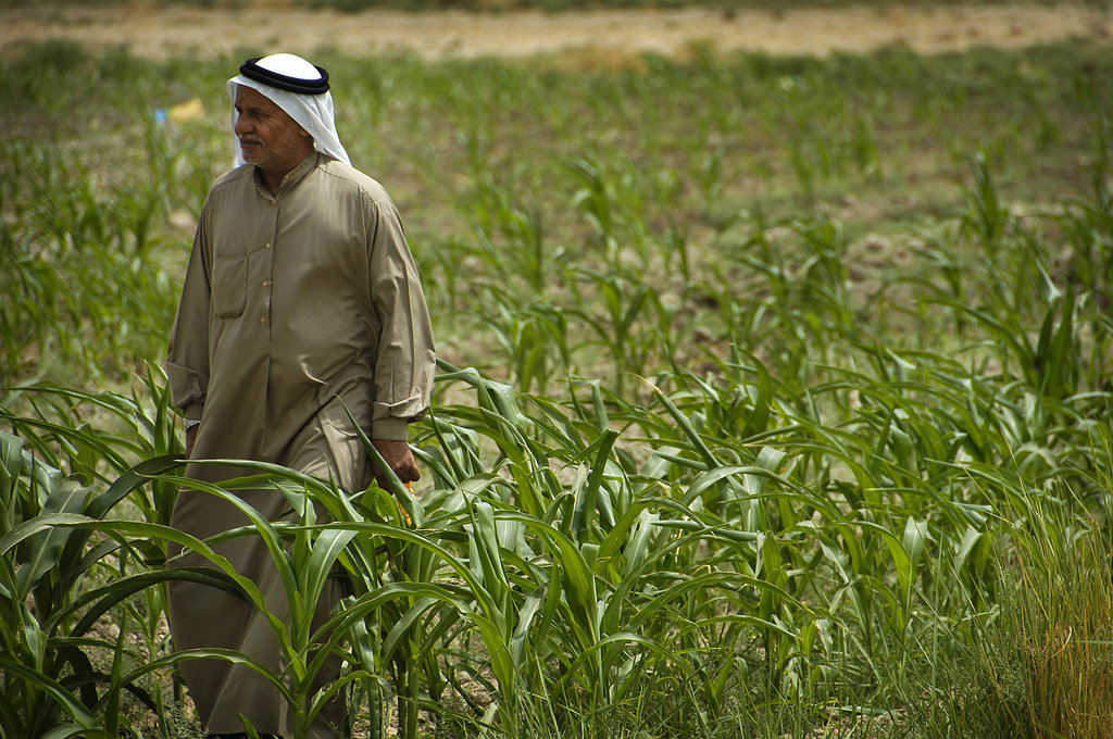 Agriculture in Iraq