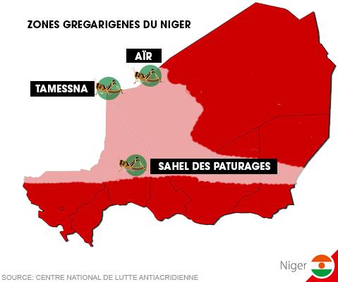 Le point de la situation acridien ne au Niger, en janvier 2017